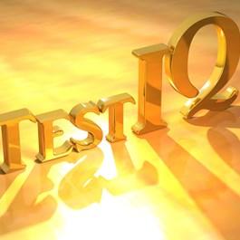 Company IQ Test