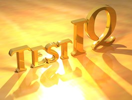 Company IQ Test (eigen locatie)