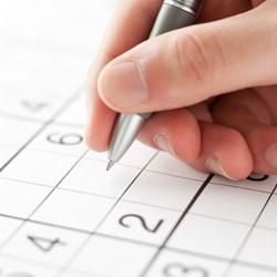Levend Sudoku