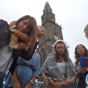 29) The Hangover Vrouwen Party Groningen