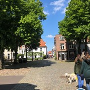 8) The Hunt Harderwijk