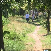 13) The Hunt Amersfoort