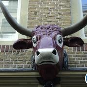12) Get the Picture Dordrecht